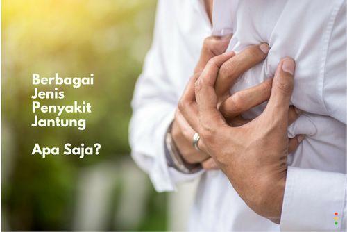 Penyakit Jantung dan Endokardium jawab untuk